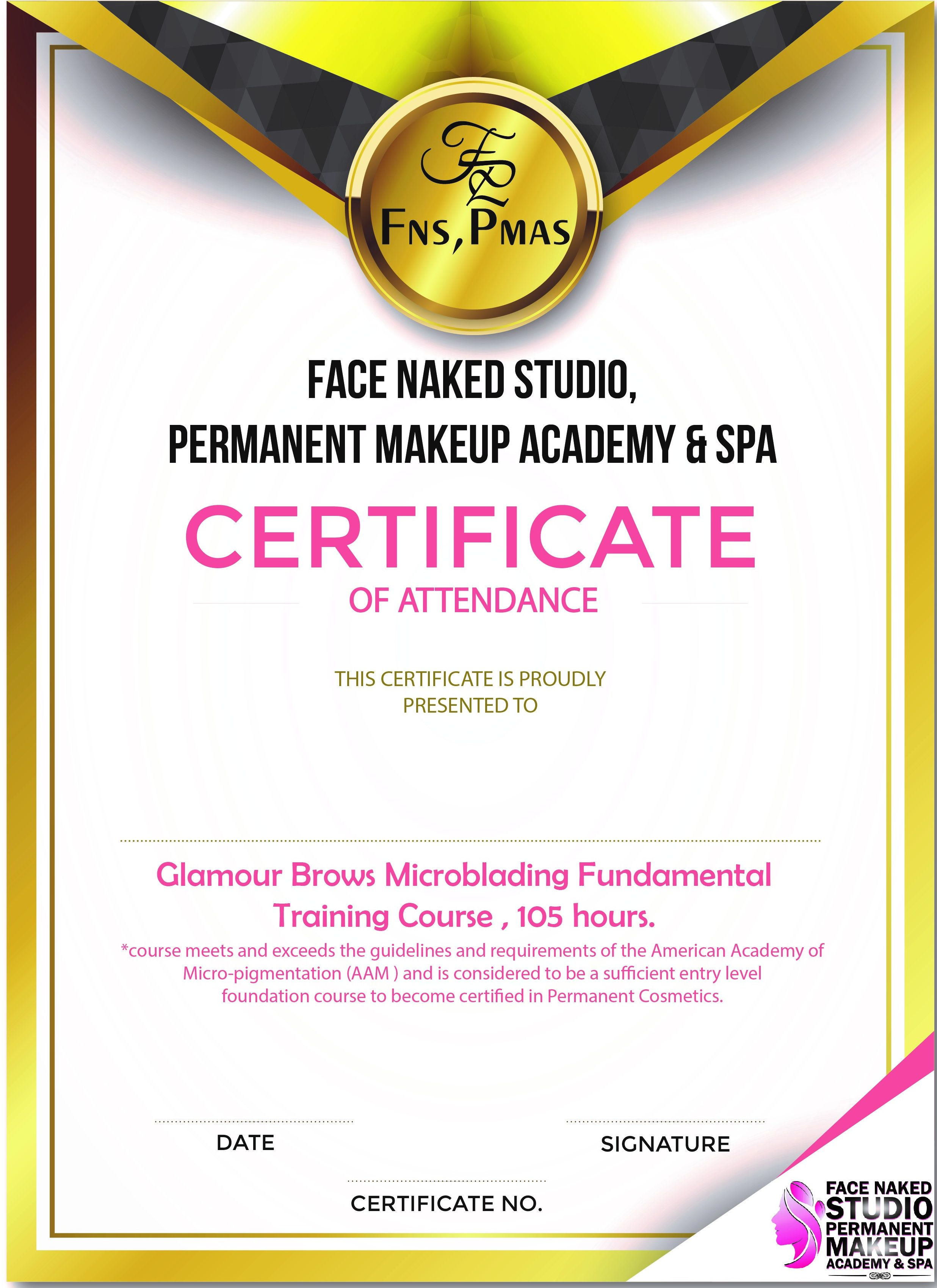 Microblading Fundamental Training - 7 days , 105 hrs -